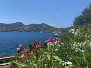 Camp de Mar: Frontline villa, stunning sea views and direct sea access