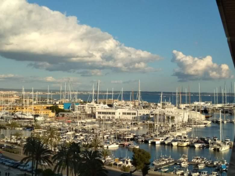 Modern studio apartment with the best views to the sea, Port, and Cathedral of Palma