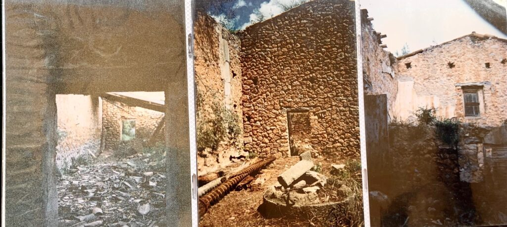 Traditional Finca with olive oil production and holiday licence